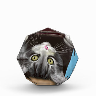 Painting of a Cute Grey Kitten in an Blue Box Acrylic Award