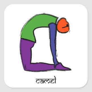 Painting of camel yoga pose with Sanskrit text. Square Sticker