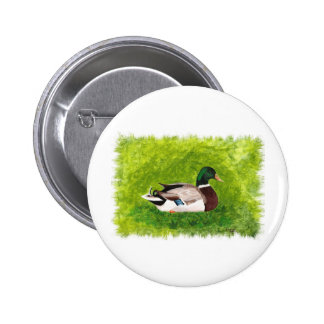 Painting of Mallard Duck sitting in the grass Pins
