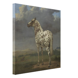 "Painting The ""Piebald"" Horse by Paulus Potter Canvas Print"