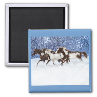 Paints In Winter 2 Inch Square Magnet