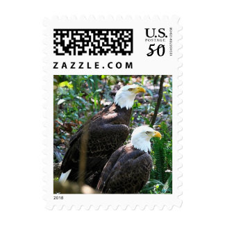 Pair Bald Eagles Postage Stamps