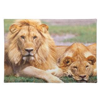 Pair of African Lions, Panthera leo, Tanzania Cloth Placemat