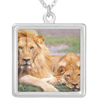 Pair of African Lions Panthera leo Tanzania Pendants