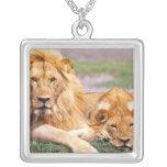 Pair of African Lions, Panthera leo, Tanzania Pendants