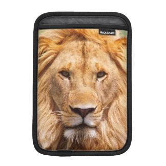Pair of African Lions, Panthera leo, Tanzania Sleeve For iPad Mini