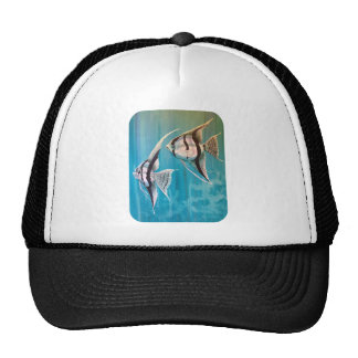 Pair of angel fish oil painting number 1 trucker hat
