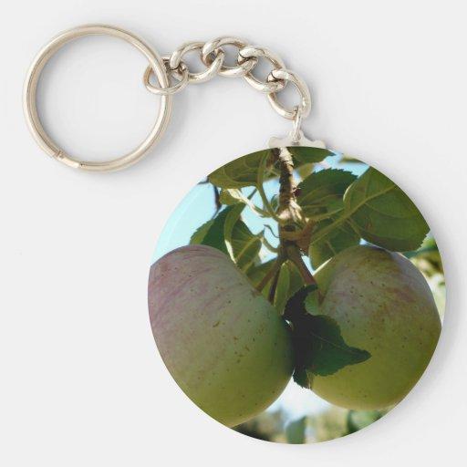 Pair of apples basic round button keychain