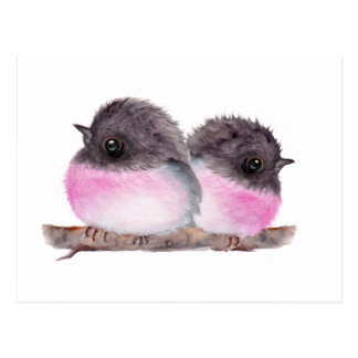 Pair of baby birds pink robins watercolor painting postcard