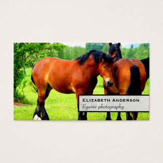 Pair Of Bay Polish Horses | Green Landscape Business Card