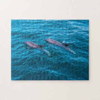 Pair of Bottlenose Dolphins Jigsaw Puzzle