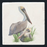 """Pair of Brown Pelicans Customizable Stone Coaster<br><div class=""""desc"""">The Brown Pelican (Pelecanus occidentalis)is smallest of the eight species of pelicans. Shown are a pair of Brown Pelicans, one standing and one sitting, relax by water's edge. These adult brown pelicans have a grayish-brown body with a darker underbelly and white head and neck. Customize by adding your own caption,...</div>"""