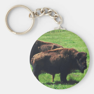 Pair of Buffaloes Basic Round Button Keychain
