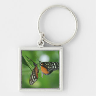 Pair of Butterflies Key Chains