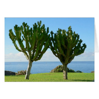 Pair Of Cactuses Greeting Cards