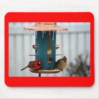 Pair of Cardinals at Icy BirdFeeder Mouse Pad