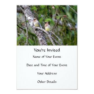 Pair of Cedar Waxwings Card