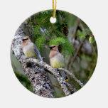 Pair of Cedar Waxwings Christmas Tree Ornaments