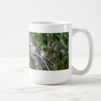 Pair of Cedar Waxwings Coffee Mug