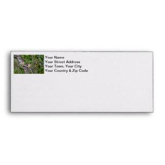Pair of Cedar Waxwings Envelopes