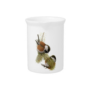 Pair of Chestnut-backed Chickadee on Pine Tree Beverage Pitcher