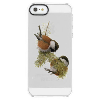 Pair of Chestnut-backed Chickadee on Pine Tree Clear iPhone SE/5/5s Case