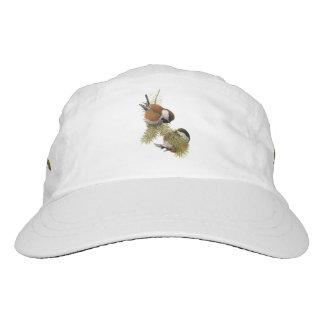 Pair of Chestnut-backed Chickadee on Pine Tree Hat