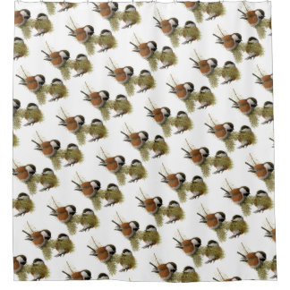 pair of chickadee on pine tree shower curtain