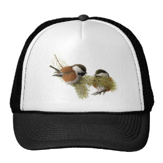 Pair of Chestnut-backed Chickadee on Pine Tree Trucker Hat