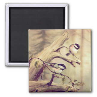 PAIR of CHICKADEES by SHARON SHARPE 2 Inch Square Magnet
