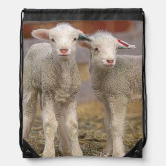 Pair of commercial Targhee Lambs Drawstring Backpack