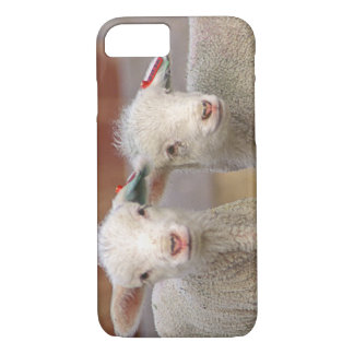 Pair of commercial Targhee Lambs iPhone 8/7 Case