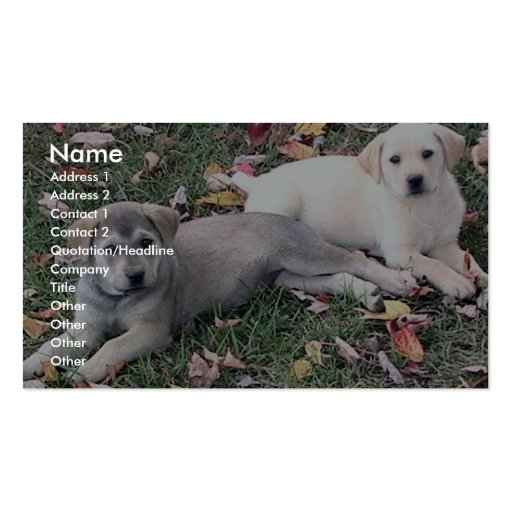 Pair Of Cute Puppies Laying On The Green Grass. Business Card