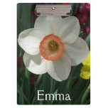 Pair of Daffodils Pink and Yellow Spring Flowers Clipboard