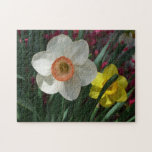 Pair of Daffodils Pink and Yellow Spring Flowers Jigsaw Puzzle