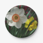 Pair of Daffodils Pink and Yellow Spring Flowers Paper Plate