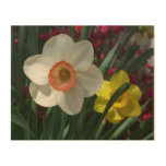 Pair of Daffodils Pink and Yellow Spring Flowers Wood Wall Art