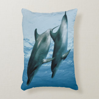 Pair of Dolphins Accent Pillow