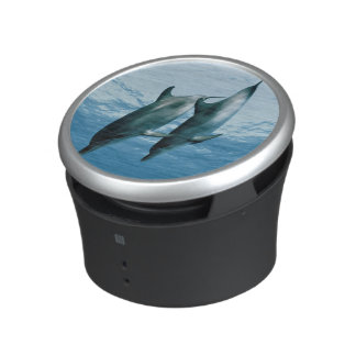 Pair of Dolphins Bluetooth Speaker