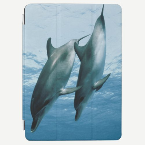 Pair of Dolphins iPad Air Cover