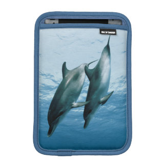 Pair of Dolphins iPad Mini Sleeve