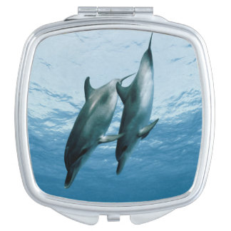 Pair of Dolphins Makeup Mirror