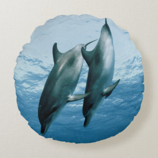 Pair of Dolphins Round Pillow