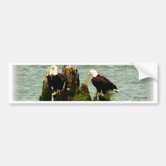Pair of Eagles Bumper Sticker