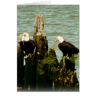 Pair of Eagles Card