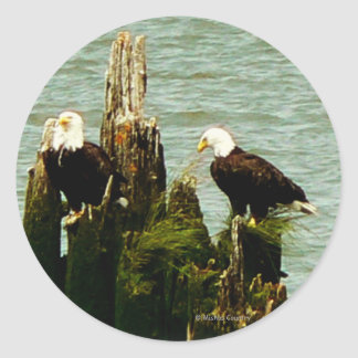 Pair of Eagles Classic Round Sticker