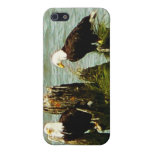 Pair of Eagles iPhone 5 Cases