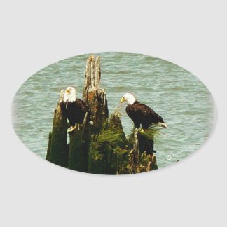 Pair of Eagles Oval Sticker