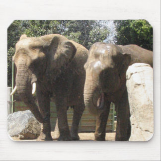 Pair of Elephants Mouse Pad