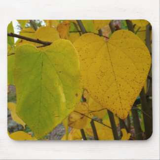 Pair of Fall Redbud Leaves Mousepad